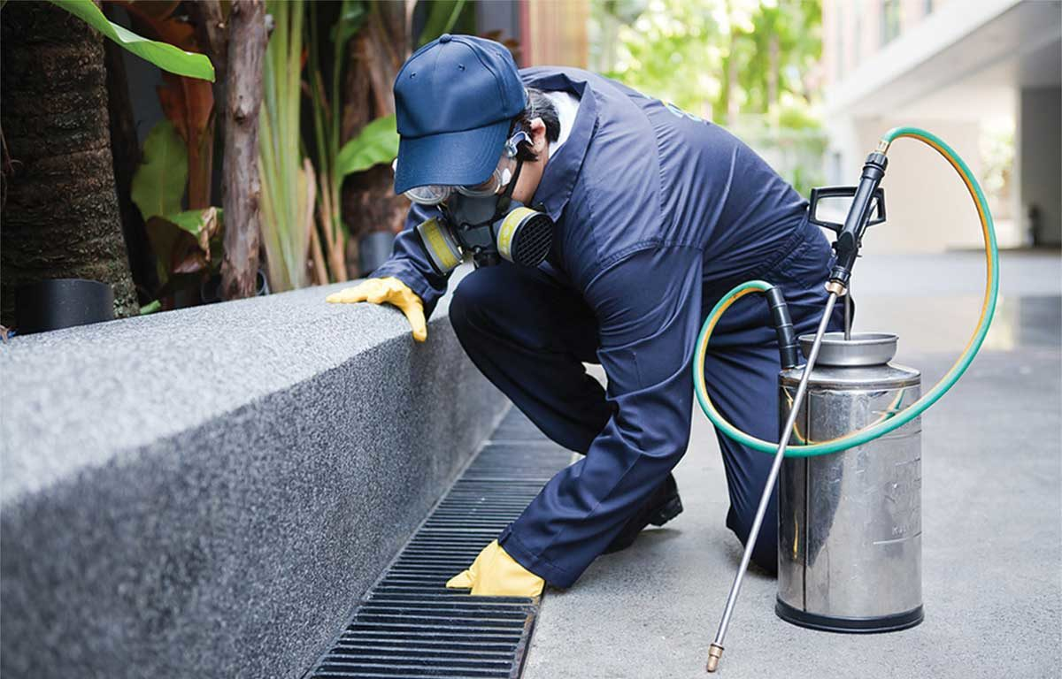 5 Keys to an Effective Pest Management Program