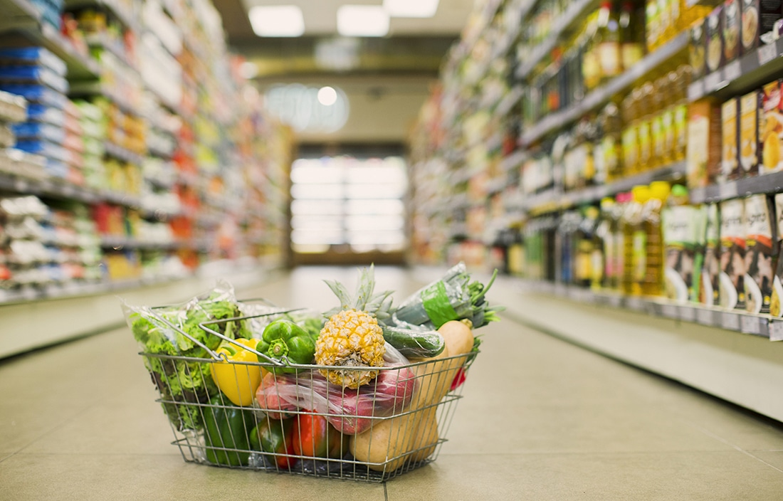 Pests Affecting Food Retail Businesses